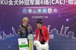 14个月比熊小公主戛纳,在哈尔滨第二天的比赛再获成犬组全场总冠军BIS3,青年组全场总 ...