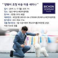 受韩国KKF协会邀请,到韩国ACE宠物美容学校进行比熊犬美容公开课的讲解!感谢韩国的老 ...
