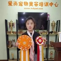杨丹老师通过CKU牵犬师A级,并且获得A级牵犬师优秀奖!感谢梁老师辛苦审查!