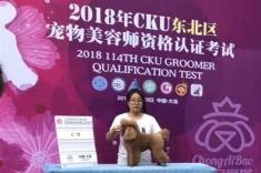 大连2018年CKU宠物bwin官网资格认定考试!莹莹同学贵宾通过C级!