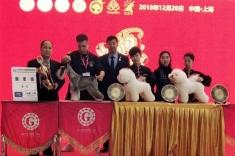 """恭喜小将团队''哈尔滨爱尚队"""",在2018年CKU宠物美容团体赛获得 新星组获得季军."""