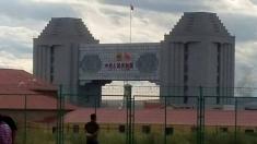 CKU满洲里三天犬展圆满结束,哈尔滨爱尚·壹明犬舍,参赛犬只获得BIS,BIG.BOB