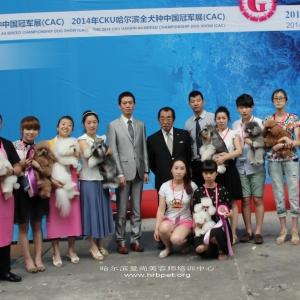 C级,B级,A级,教师级,全部通过2014年CKU东北区宠物bwin官网资格认定!