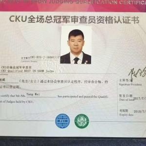 杨威老师获得首批中国CKU全场总冠军BIS审查员资格证书!