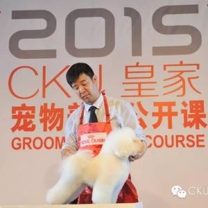 杨威老师2015CKU上海公开课!比熊犬美容讲座!