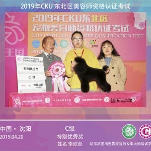 恭喜欣然同学在CKU2019年4月沈阳bwin官网资格认定考试获得C级特别优秀奖!