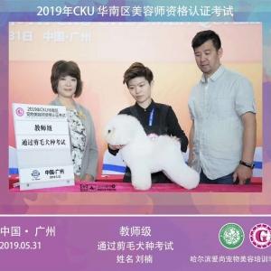 恭喜我校刘楠同学经过短时间的进修通过了CKU教师级剪毛组资格认证考试!