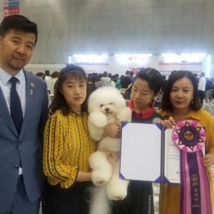 恭喜来自吉林的马卉同学,通过韩国KKF教师级考核,并获得第三名