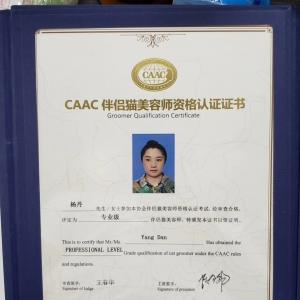 杨丹老师'获得CAAC伴侣猫bwin官网,专业级bwin官网!